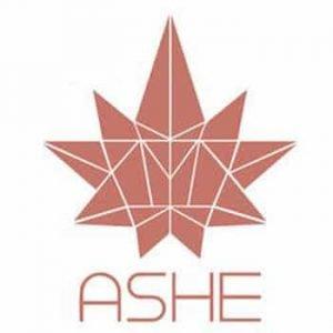 ASHE Society Delivery Logo