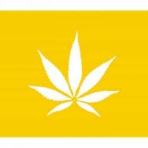 Coastal West Dispensary Logo