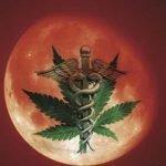 Red Moon Dispensary Logo