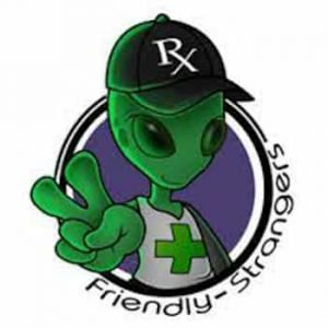 Friendly Strangers Delivery Logo