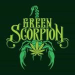 Green Scorpion Delivery Logo