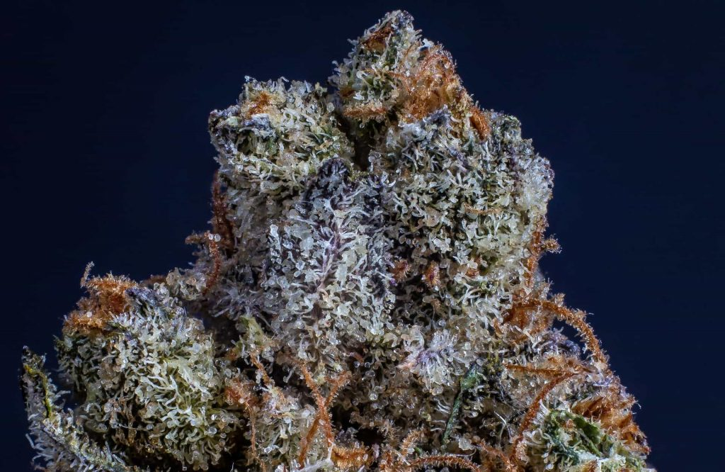 7 ways to tell good weed from bad weed