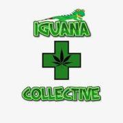 Iguana Collective Dispensary Logo